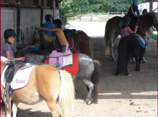 bapteme-poneys